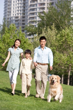 Happy Family Walking Dog in the Park
